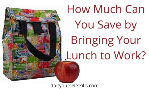 Lunch bag and apple to save you money when you bring your lunch to work