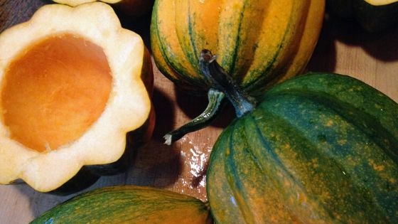 Acorn squash from the vegetable garden