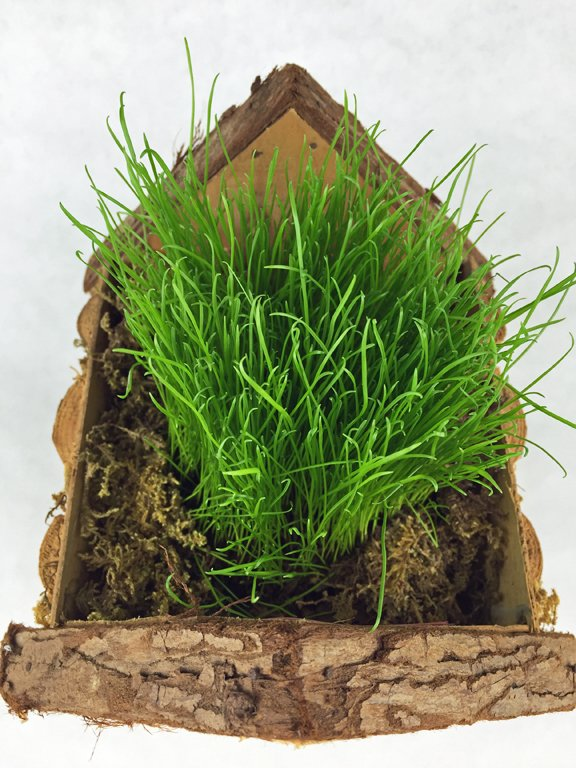 Birdhouse basket filled with real grass and sphaghnum moss