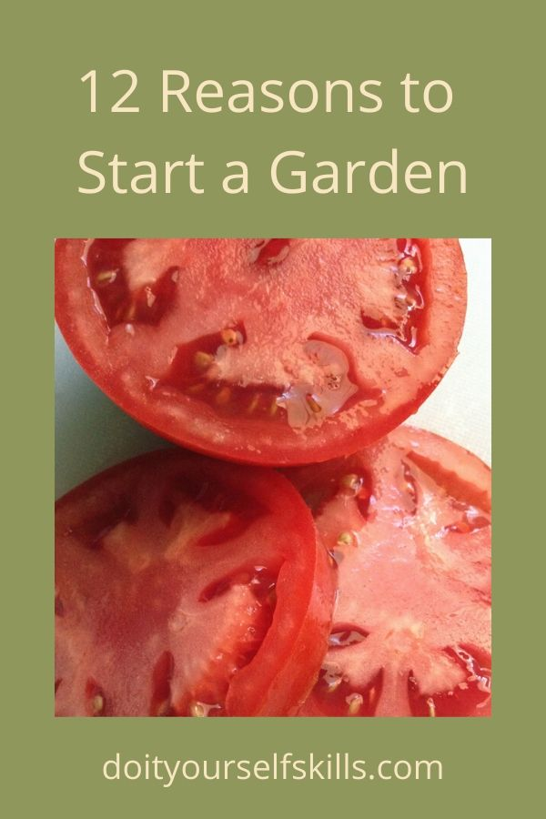 Slices of fresh tomatoes - one of the 12 reasons to start a garden