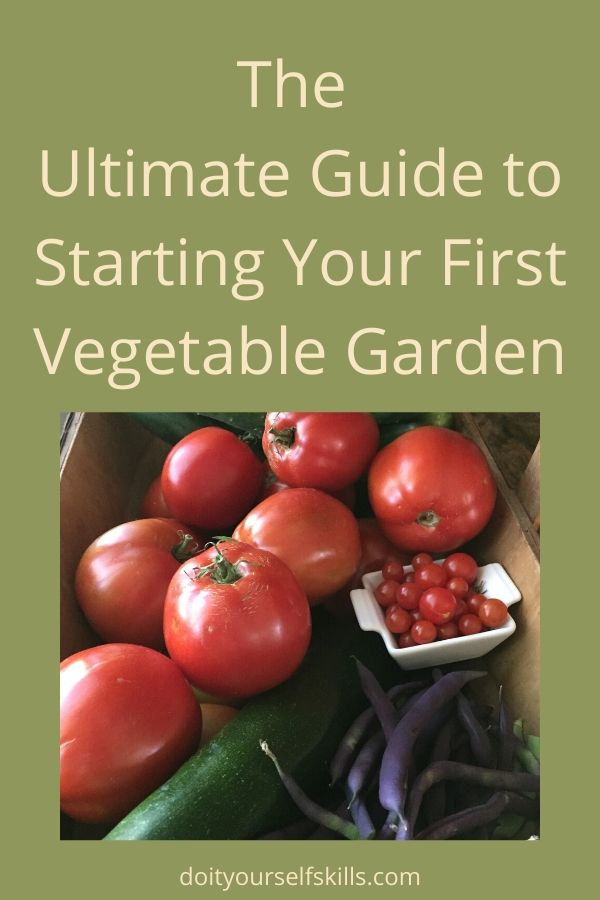 Fresh vegetables that you can grow yourself