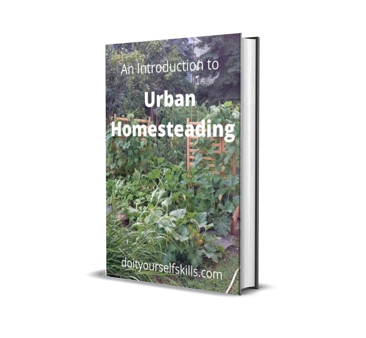 a book titles An Introduction to Urban Homesteading